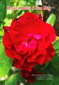 Dzieci, Róża i Pan Bóg