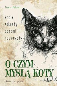 O czym myślą koty. Kocie sekrety oczami naukowców