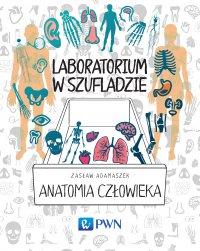 Laboratorium w szufladzie - anatomia człowieka