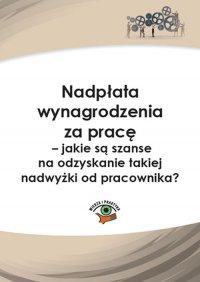 Nadpłata wynagrodzenia za pracę – jakie są szanse na odzyskanie takiej nadwyżki? - Rafał Krawczyk - ebook