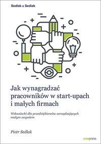 Jak wynagradzać pracowników w start-upach i małych firmach. Wskazówki dla przedsiębiorców zarządzających małym zespołem - Piotr Sedlak - ebook