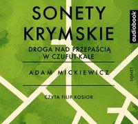 Sonety krymskie - Droga nad przepaścią w Czufut-Kale - Adam Mickiewicz - audiobook