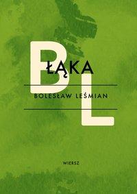 Łąka - Bolesław Leśmian - ebook
