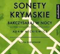 Sonety krymskie - Bakczysaraj w nocy - Adam Mickiewicz - audiobook
