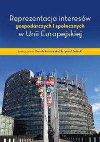 Reprezentacja interesów gospodarczych i społecznych w Unii Europejskiej - Urszula Kurczewska - ebook