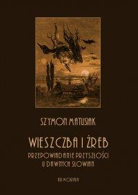 Wieszczba i żreb. Przepowiadanie przyszłości u dawnych Słowian - Szymon Matusiak - ebook