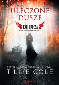 Uleczone dusze. Kaci Hadesa - Tillie Cole - ebook