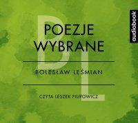 Poezje wybrane - Bolesław Leśmian - Bolesław Leśmian - audiobook