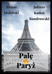 Palę Paryż