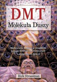 DMT. Molekuła duszy. Rewolucyjne badania w dziedzinie biologii doświadczeń mistycznych i z pogranicza śmierci - Rick Strassman - ebook