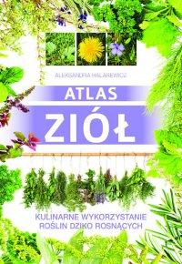 Atlas ziół. Kulinarne wykorzystanie roślin dziko rosnących - Aleksandra Halarewicz - ebook