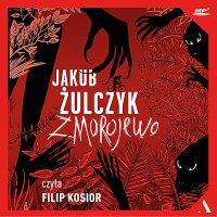 Zmorojewo - Jakub Żulczyk - audiobook