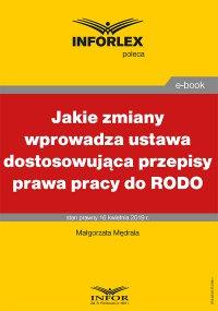 Jakie zmiany wprowadza ustawa dostosowująca przepisy prawa pracy do RODO - Malgorzata Mędrala - ebook