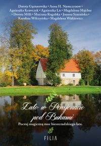 Lato w Pensjonacie pod Bukami - Dorota Gąsiorowska - ebook
