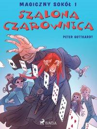 Magiczny sokół 1 - Szalona Czarownica - Peter Gotthardt - ebook