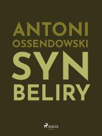 Syn Beliry