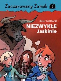 Zaczarowany Zamek 5 - Niezwykłe Jaskinie - Peter Gotthardt - ebook