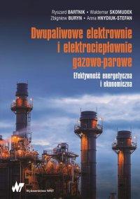Dwupaliwowe elektrownie i elektrociepłownie gazowo-parowe - Ryszard Bartnik - ebook