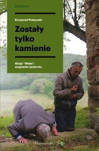 Zostały tylko kamienie - Krzysztof Potaczała - ebook