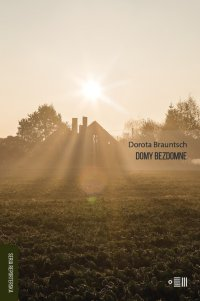 Domy bezdomne - Dorota Brauntsch - ebook