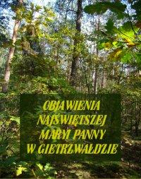 Objawienia Najświętszej Maryi Panny W Gietrzwałdzie. Ze źródeł autentycznych - Stanisław Roman - ebook