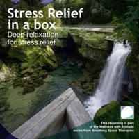 Stress Relief In A Box - Annie Lawler - audiobook