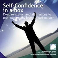 Self Confidence In A Box - Annie Lawler - audiobook