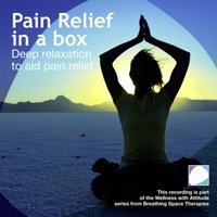 Pain Relief In A Box - Annie Lawler - audiobook