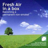 Fresh Air In A Box - Annie Lawler - audiobook