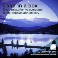 Calm In A Box - Annie Lawler - audiobook