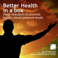 Better Health In A Box - Annie Lawler - audiobook