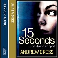 15 Seconds - Andrew Gross - audiobook