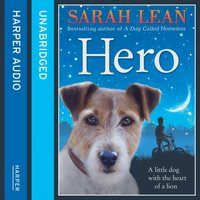 Hero - Sarah Lean - audiobook