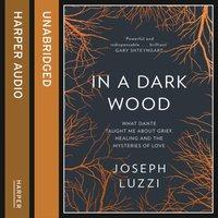 In a Dark Wood - Joseph Luzzi - audiobook