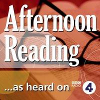 Mark Twain's Niagara (BBC Radio 4: Afternoon Reading) - Mark Twain - audiobook