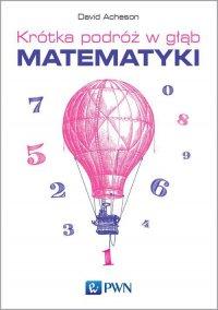 Krótka podróż w głąb matematyki - David Acheson - ebook