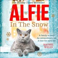 Alfie in the Snow - Rachel Wells - audiobook