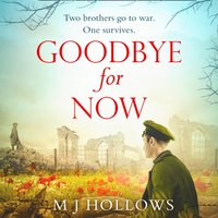 Goodbye for Now - M.J. Hollows - audiobook