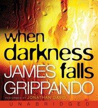 When Darkness Falls - James Grippando - audiobook