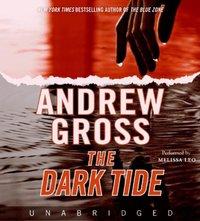 Dark Tide - Andrew Gross - audiobook