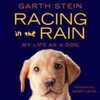 Racing in the Rain - Garth Stein - audiobook