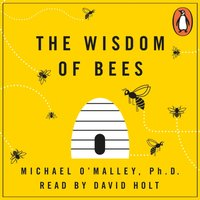 Wisdom of Bees - Michael O'Malley - audiobook