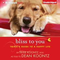 Bliss to You - Trixie Koontz - audiobook