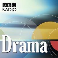 Jailbird Lover (BBC Radio Drama) - Craig Hawes - audiobook