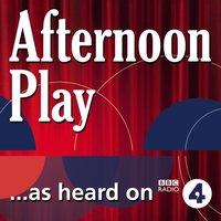 Magnificent Andrea - Nigel Planer - audiobook