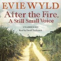 After the Fire, A Still Small Voice - Evie Wyld - audiobook