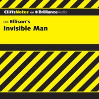 Invisible Man - Durthy A. Washington - audiobook
