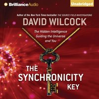 Synchronicity Key - David Wilcock - audiobook