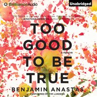 Too Good To Be True - Benjamin Anastas - audiobook