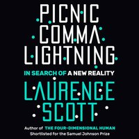 Picnic Comma Lightning - Laurence Scott - audiobook